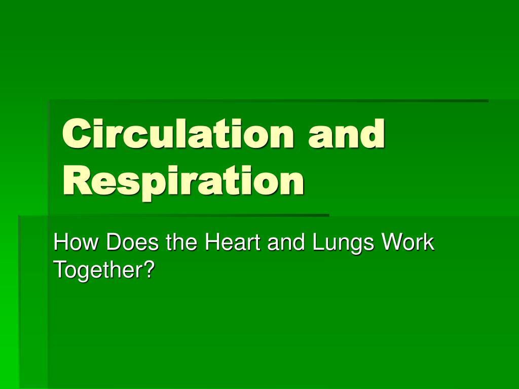 circulation and respiration l.