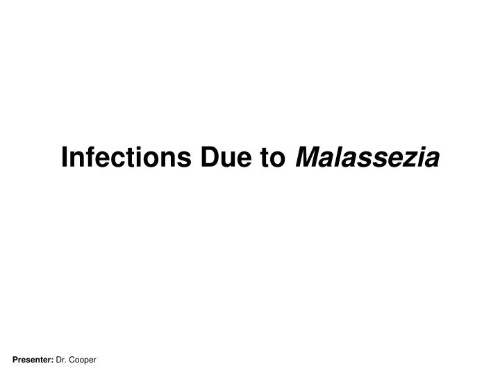 infections due to malassezia n.