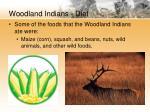 woodland indians diet
