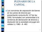 plenario de la capital