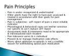 pain principles