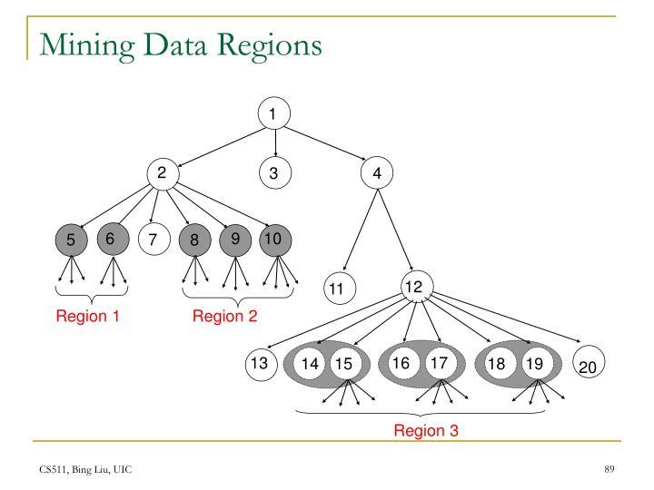 Mining Data Regions