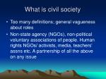 what is civil society