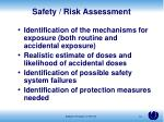 safety risk assessment