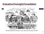 evaluation oversight consultation
