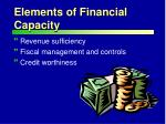 elements of financial capacity