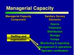 managerial capacity2