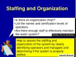 staffing and organization1