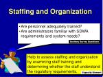 staffing and organization2
