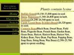 plants contain lysine