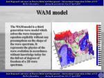 wam model
