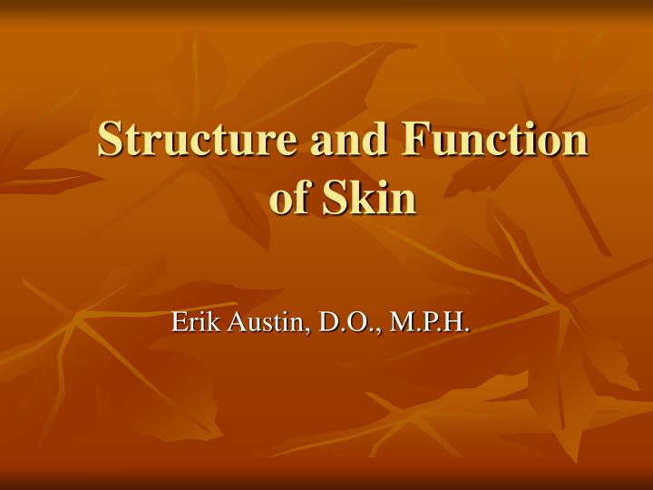 structure and function of skin n.
