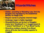 wizards witches