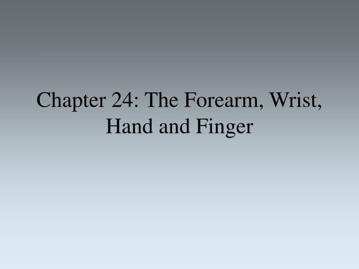 chapter 24 the forearm wrist hand and finger n.