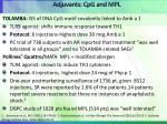 adjuvants cpg and mpl