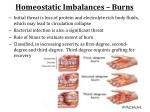 homeostatic imbalances burns