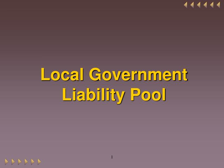 local government liability pool n.
