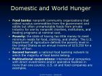 domestic and world hunger2