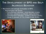 the development of bpd and self injurious behavior5