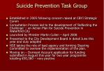 suicide prevention task group