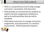 what is the tk20 system