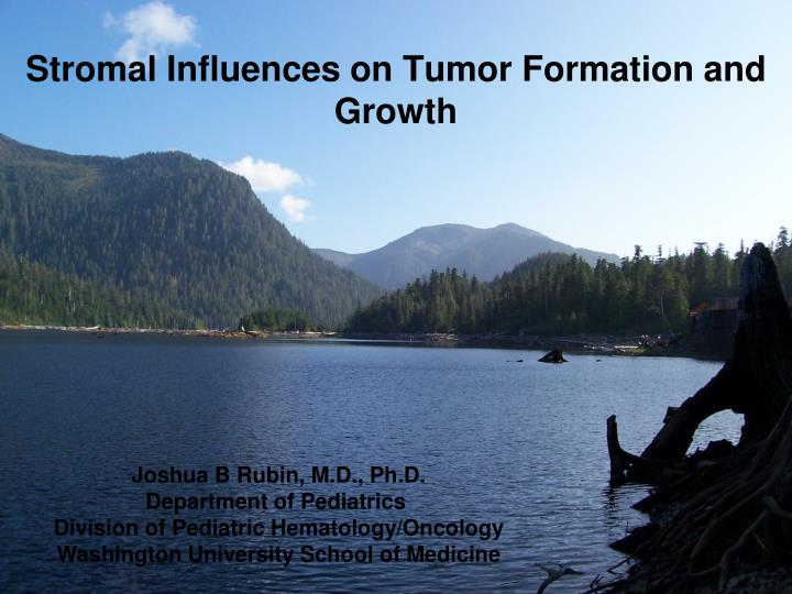 stromal influences on tumor formation and growth n.