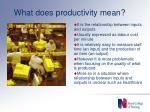 what does productivity mean