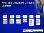 what is a document lifecycle example