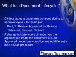 what is a document lifecycle