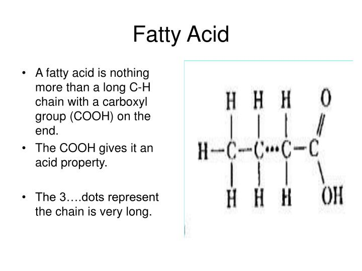 fatty acid n.