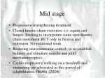 mid stage