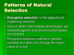 patterns of natural selection3
