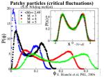 patchy particles critical fluctuations