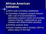 african american initiative1