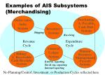 examples of ais subsystems merchandising