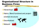 organizational structure in business firms