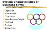 system characteristics of business firms