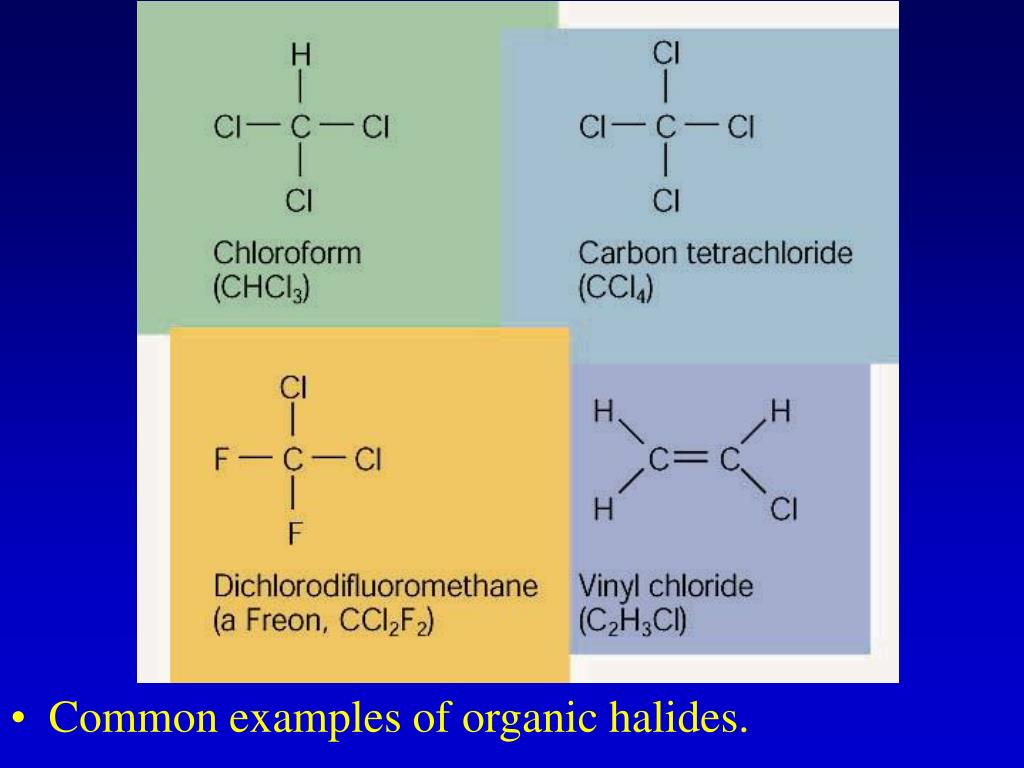 Common examples of organic halides.