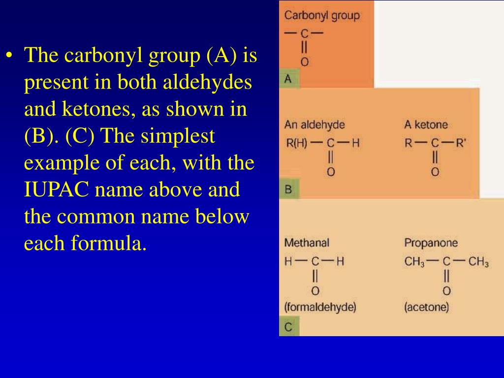 The carbonyl group (A) is present in both aldehydes and ketones, as shown in (B). (C) The simplest example of each, with the IUPAC name above and the common name below each formula.