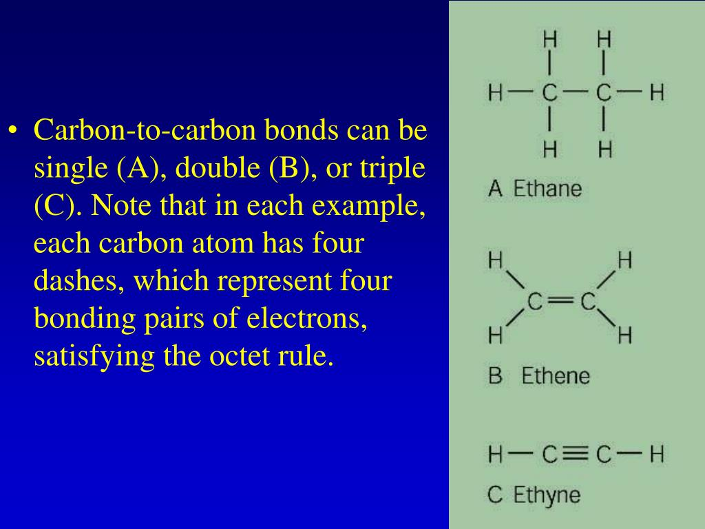 Carbon-to-carbon bonds can be single (A), double (B), or triple (C). Note that in each example, each carbon atom has four dashes, which represent four bonding pairs of electrons, satisfying the octet rule.
