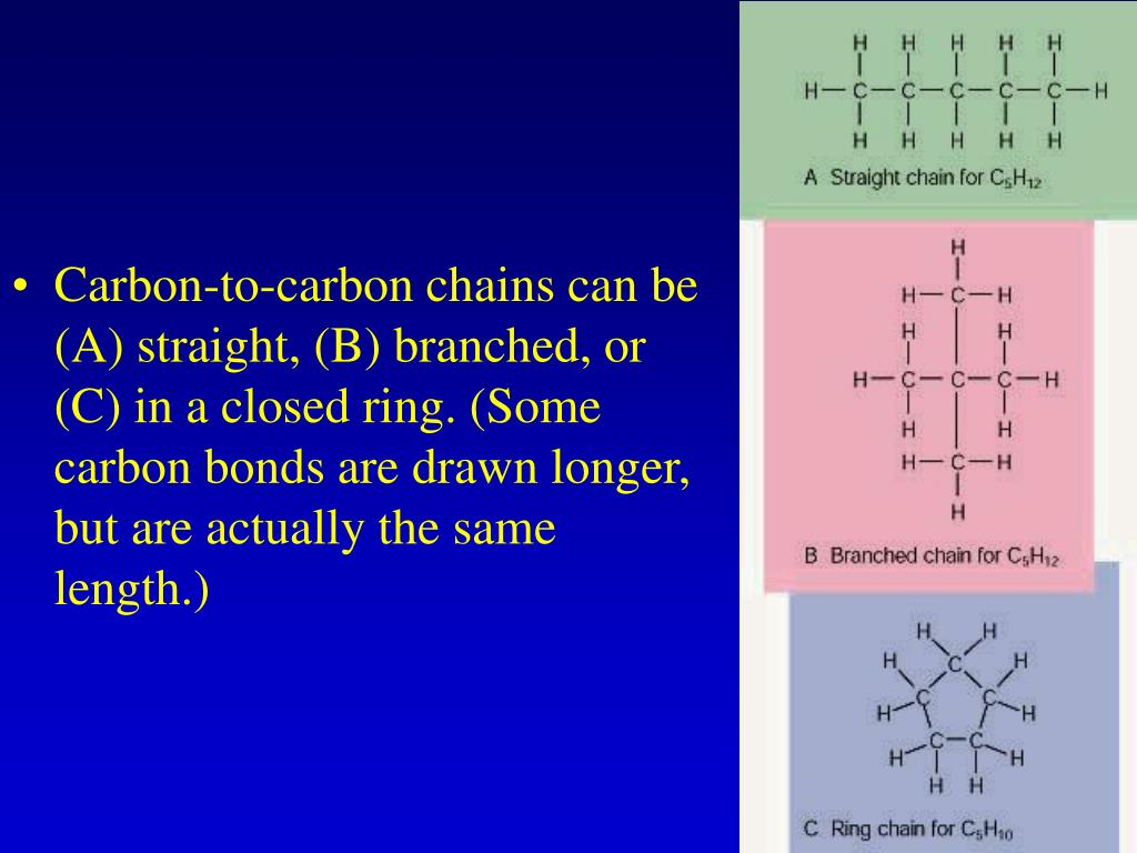 Carbon-to-carbon chains can be (A) straight, (B) branched, or (C) in a closed ring. (Some carbon bonds are drawn longer, but are actually the same length.)