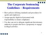 the corporate sentencing guidelines requirements