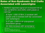 rates of non syndromic oral clefts associated with lamotrigine