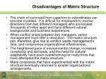 disadvantages of matrix structure