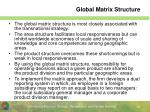 global matrix structure1