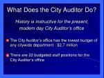 what does the city auditor do