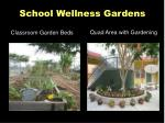 school wellness gardens