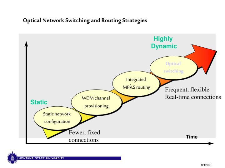 Optical Network Switching and Routing Strategies