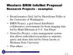 western brin infonet proposal research projects examples