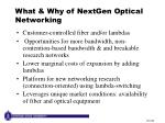 what why of nextgen optical networking